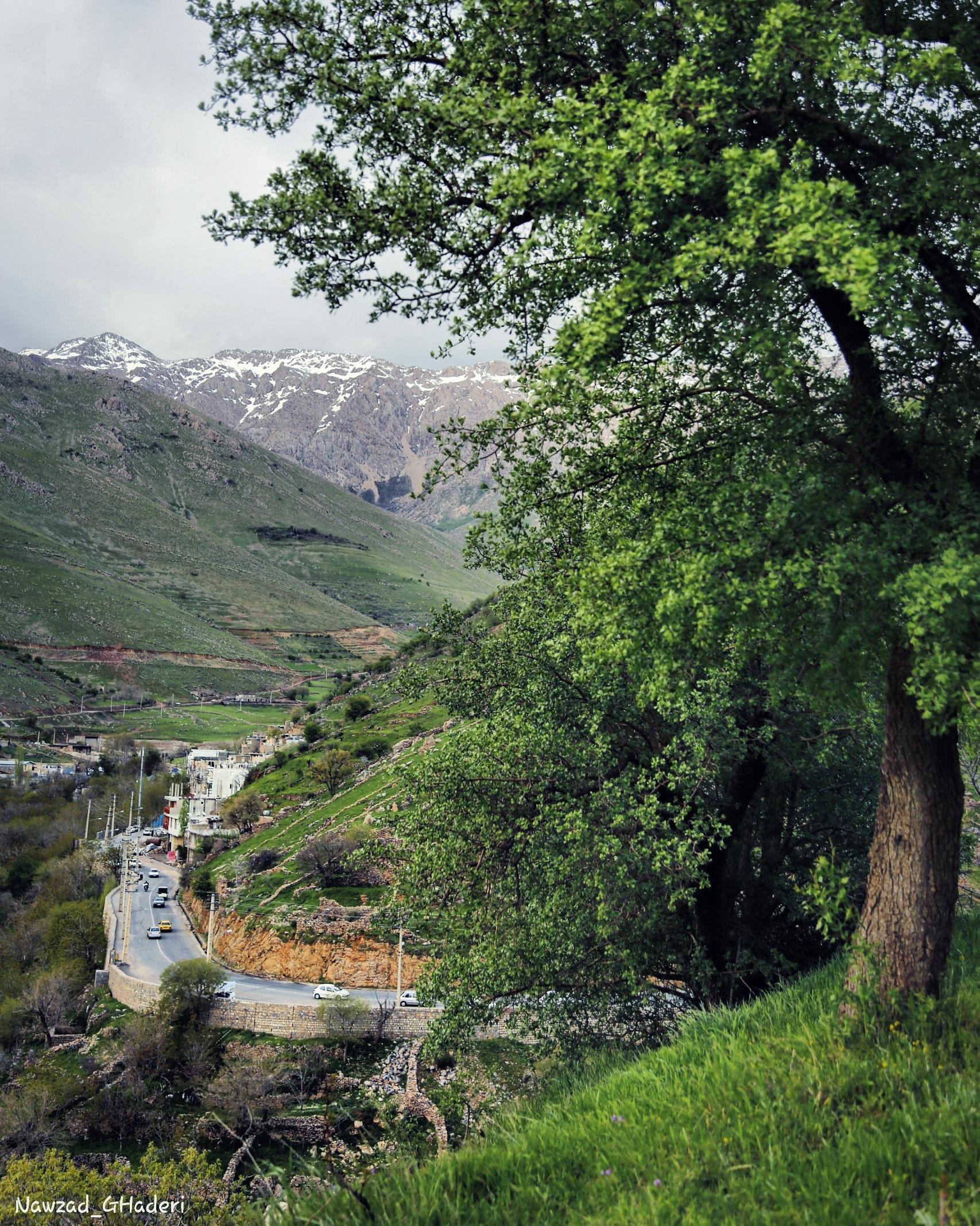 پاوه / کرمانشاه