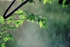 باد و باران  شدید در راه مازندران