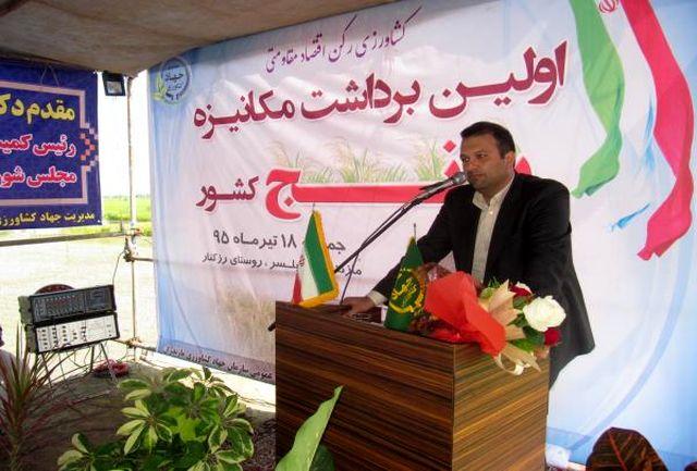 کشاورزی بزرگترین و مهمترین محور توسعه استان است