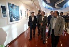 آغاز به کار نمایشگاه هنرهای تجسمی و نقاشی در کیش