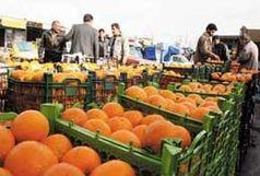 کشف بیش از ۱۱تن میوه قاچاق