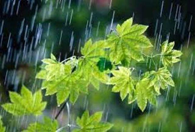 بارش باران در 24 ساعت گذشته در کرج نیم میلیمتر بوده است
