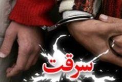 دستگیری ۱۰ سارق حرفه ای وکشف ۳۰ فقره سرقت در ایوان