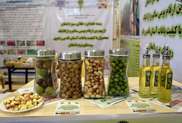 تولید سالانه 11 هزار و 400 تن گیاه دارویی در همدان