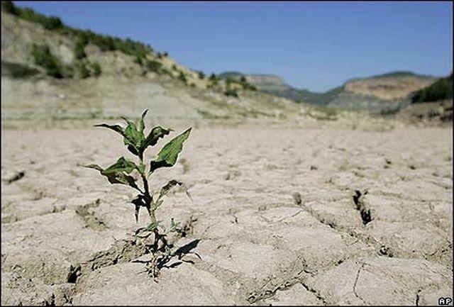 یزد کم باران ترین استان کشور