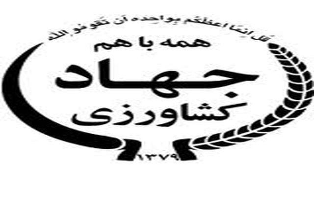 رییس سازمان جهاد کشاورزی استان زنجان معارفه شد