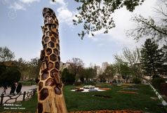 خلق آثار بدیع هنری بر تنه درختان خشکیده در تفرجگاه ائل گلی تبریز