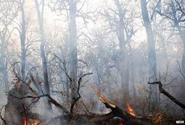 هواشناسی گلستان درباره احتمال آتش سوزی در جنگل هشدار داد