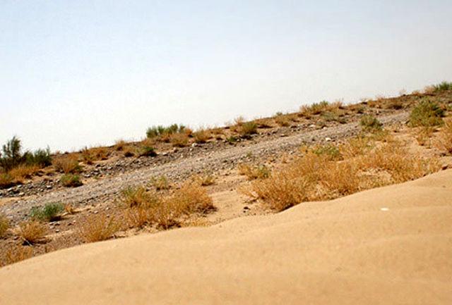 مشارکت وزارت نفت در احیای اراضی بیابانی هرمزگان