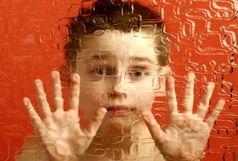 بهرهمندی 24 بیمار مبتلا به اوتیسم از خدمات بهزیستی در بیرجند