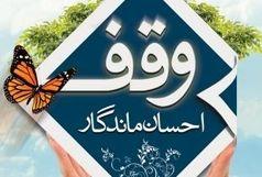 بانوی سیستانی زمین ۵ میلیاردی را وقف امور قرآنی کرد