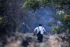 آتش سوزی در 40 هکتار از مراتع زرقان