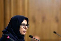 شورای پنجم استاندارد بیسابقه از شفافیت پارلمانی در ایران را محقق کرد