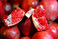 پیشبینی کاهش 10 درصدی تولید انار در استان