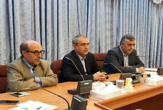 ایجاد پنج هزار و 237 شغل جدید برای روستاییان اردبیل