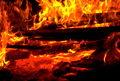 عامل  آتش سوزی های سریالی کشور شناسایی شد