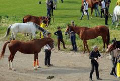جشنواره بازیهای بومی محلی با اسب برگزار میشود