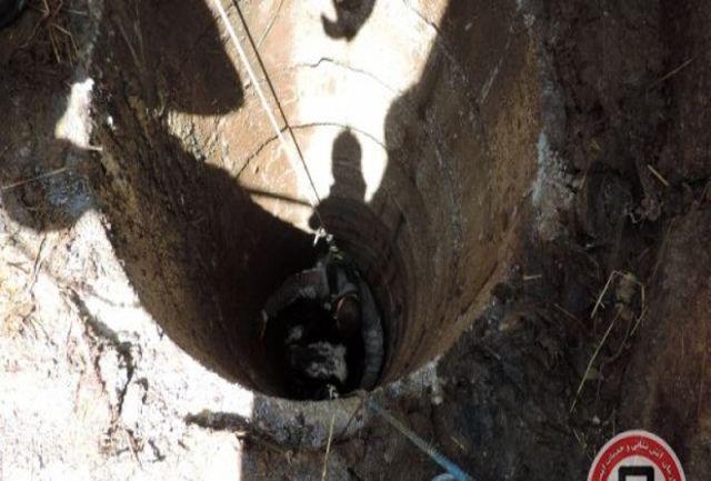 نجات معجزه آسا از قعر چاه بعد از 7 روز!