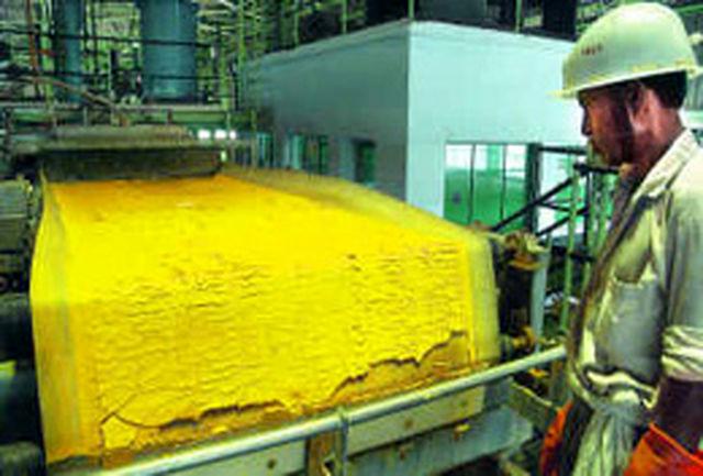 توزیع كیك زرد 100كیلویی در دانشگاه ارومیه