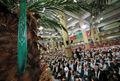 فضای زیبای امروز در صحن حسینیه امام خمینی(ره)/ ببینید