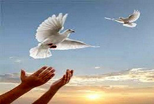 هفت زندانی محکوم به قصاص در اصفهان بخشیده شدند