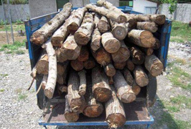 کشف بیش از یک تن چوب جنگلی قاچاق در اردل