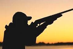 ممنوعیت شکار پرندگان وحشی و مهاجر در البرز