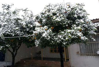 24 ساعت برفی در محمودآباد