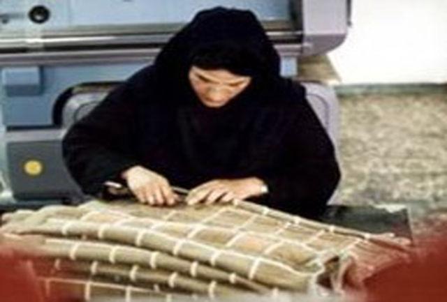مجوز بیش از 400شغل خانگی در استان صادر شد