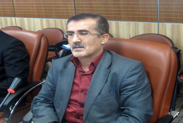 محمود حیدری رییس هیات کشتی قزوین شد