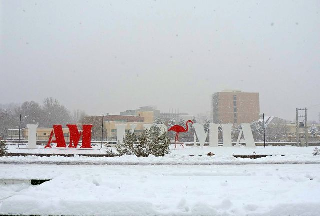 بارش برف کم سابقه در آذربایجان غربی