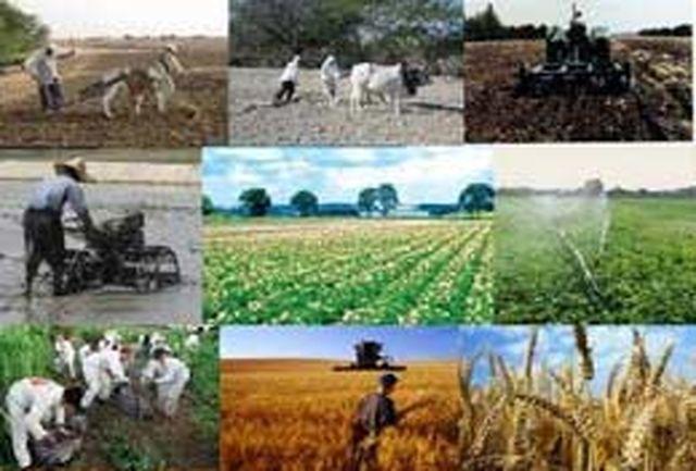 قیمت خرید تضمینی محصولات زراعی برای سال 92-1391 تعیین شد