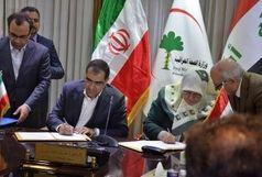 ایران و عراق توافقنامه همکاری های بهداشتی دوجانبه را فعال کردند
