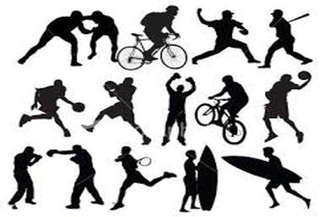 اعضای هیأت رئیسه فراکسیون ورزش تعیین شدند