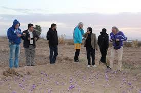 افزایش 3 برابری بازدید گردشگران خارجی از خراسان جنوبی