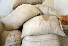کشف محموله ۱۶۰میلیون ریالی گیاهان دارویی قاچاق در خاش