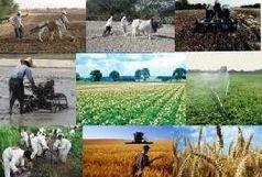 تراز تجاری بخش کشاورزی 139 میلیارد دلار رشد کرد