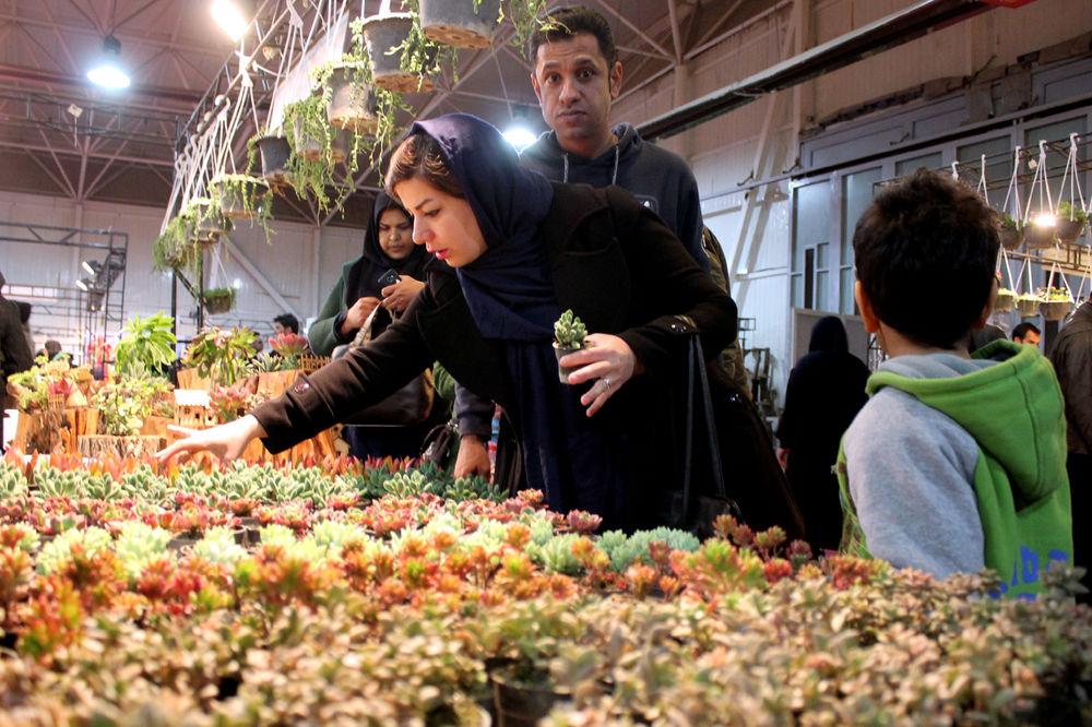 نمایشگاه گل و گیاه در شیراز