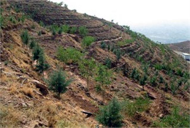 رفع تصرف بیش از ۱۰۰ هکتار از اراضی ملی