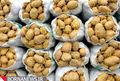 پرداخت مشوقهای صادرات سیبزمینی به صادرکنندگان کرمانشاهی