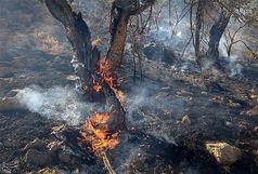 رعد و برق عامل آتشسوزی در کوه نارک گچساران/ تداوم آتشسوزی پس از 4 روز