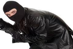 کشف 156 فقره سرقت در شیراز