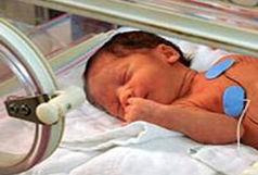 تولد 23 هزار نفر در استان یزد
