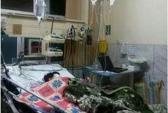 دختر هشت سال بافقی جان سه بیمار نیازمند را نجات داد