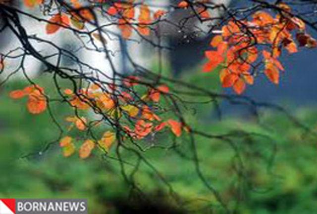 کمترین حجم بارش 42 سال اخیر کشور در پاییز 89