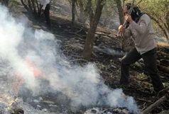آتش سوزی گسترده در جنگلها و مراتع کوه خامی در گچساران مهار شد