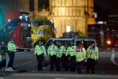 افزایش شمار کشتهشدگان خارج از پارلمان انگلیس