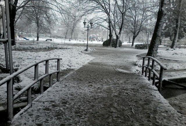 تصاویر زیبا از بارش برف - پارک شهر رشت