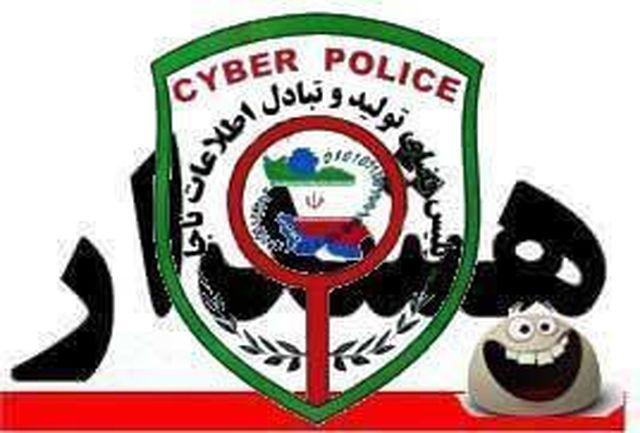 10 توصیه سایبری رئیس پلیس فتا غرب استان تهران برای زائرین اربعین