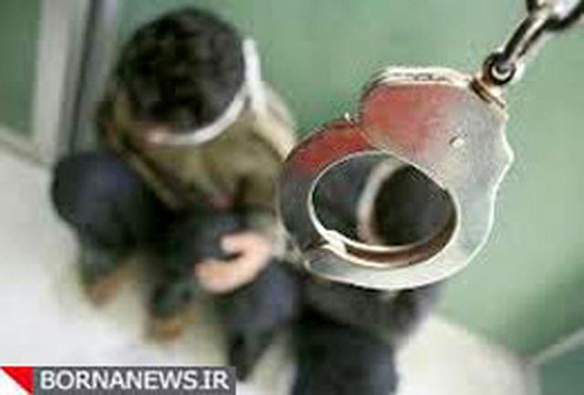زورگیران و کیف قاپان در پایتخت دستگیر شدند